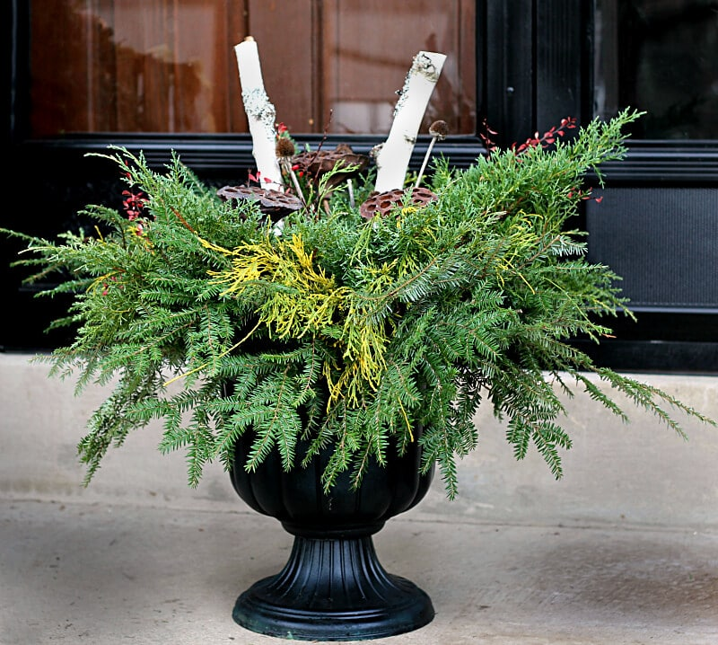 This DIY Holiday Planter tutorial can be put together in a very short time and costs next to nothing to make.