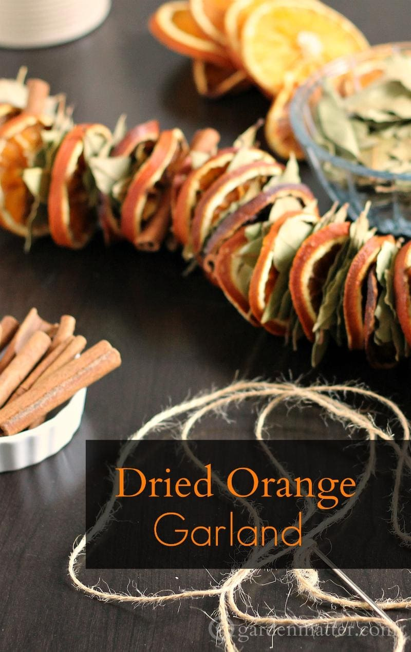 Make this dried orange garland with bay leaves and cinnamon sticks. Great for decorating at the holidays or hang in the kitchen year round.