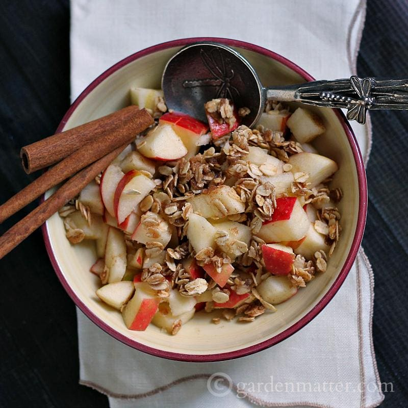 Easy No Bake Apple Crisp Recipe