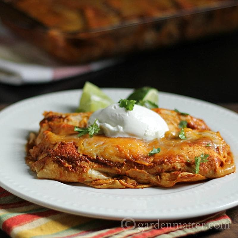 Chicken enchiladas on a plate.