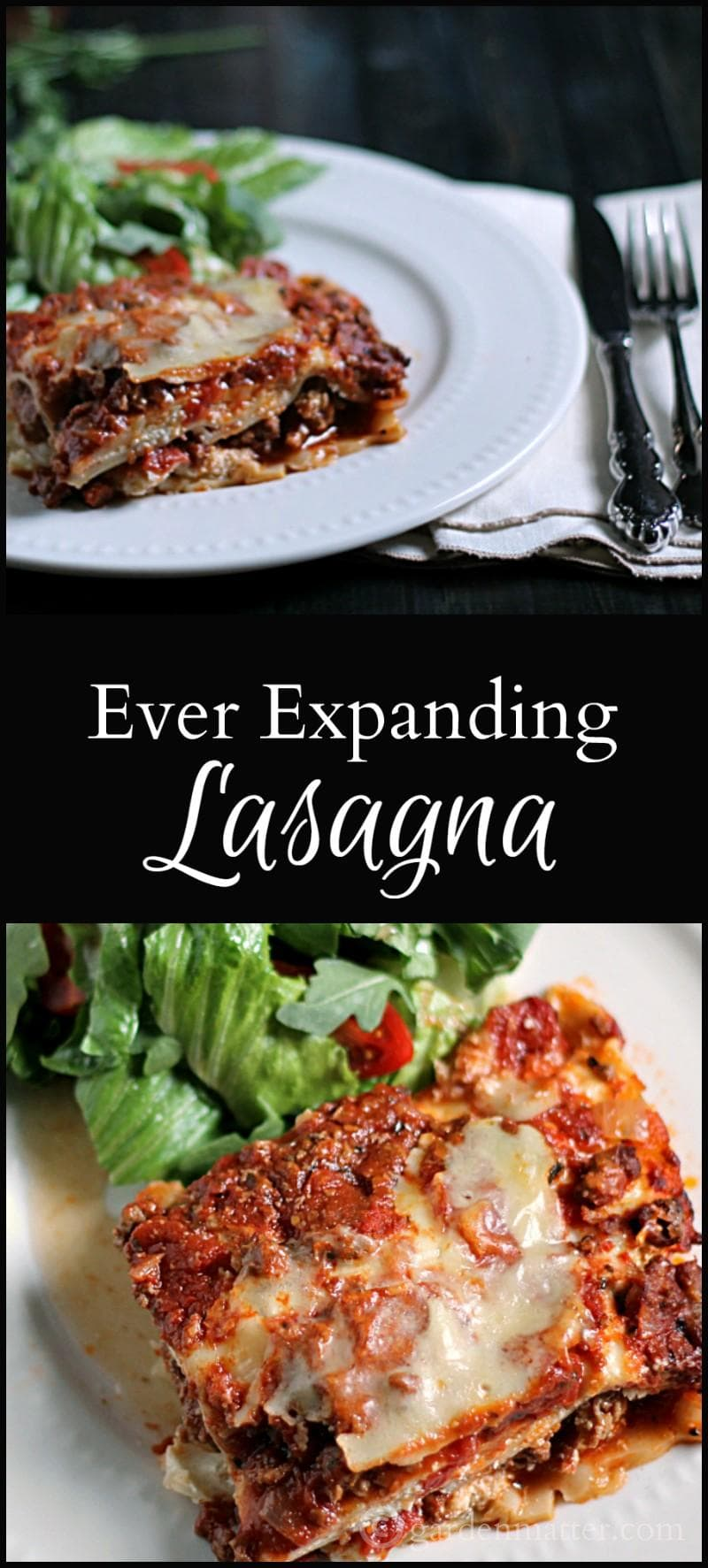 The ever expanding lasagna recipe for Better homes and gardens lasagna