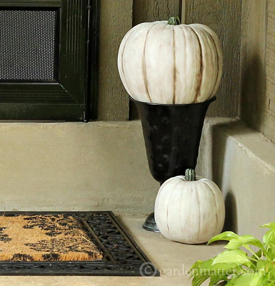 White pumpkins in dark urn