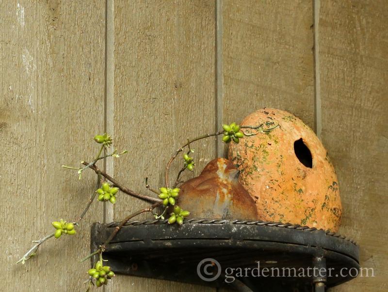 Cement bird, dogwood berries and birdhouse on shelf