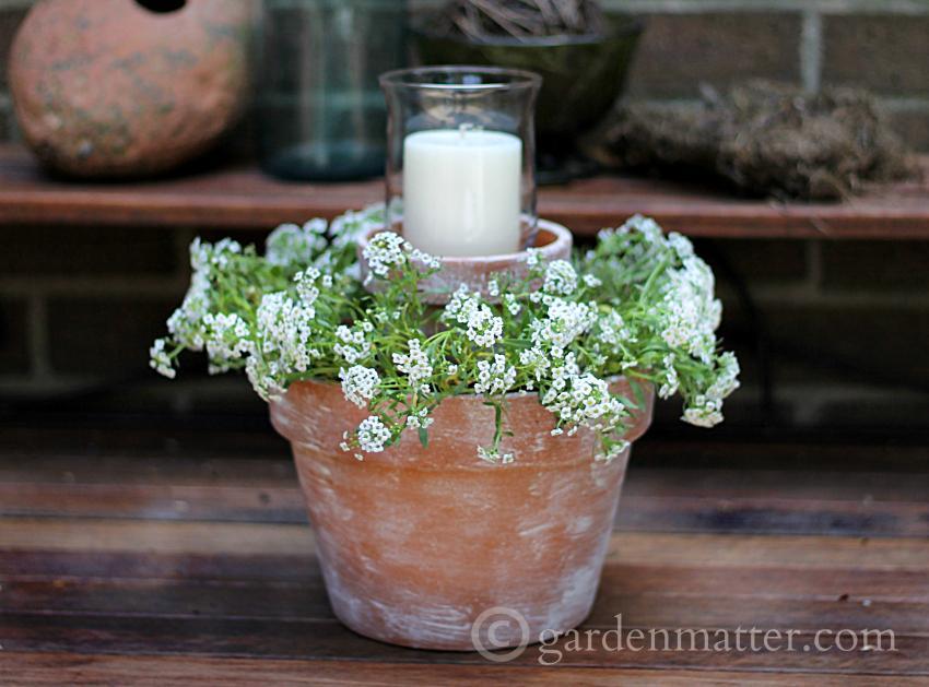 On Table ~ Flower Pot Centerpiece ~ gardenmatter.com