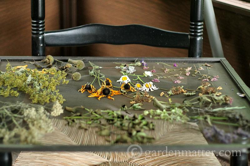 Dried flowers on screen