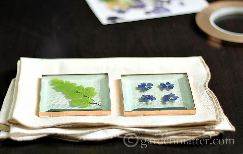 Pressed flower glass coasters using square glass and copper tape flowers from you own backyard in no time and not a lot of money.