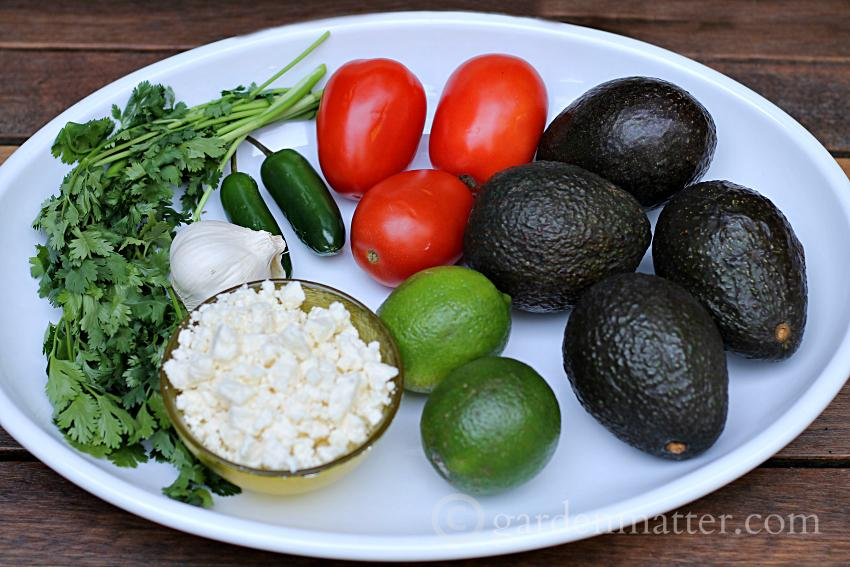 Fancy Guacamole ingredients