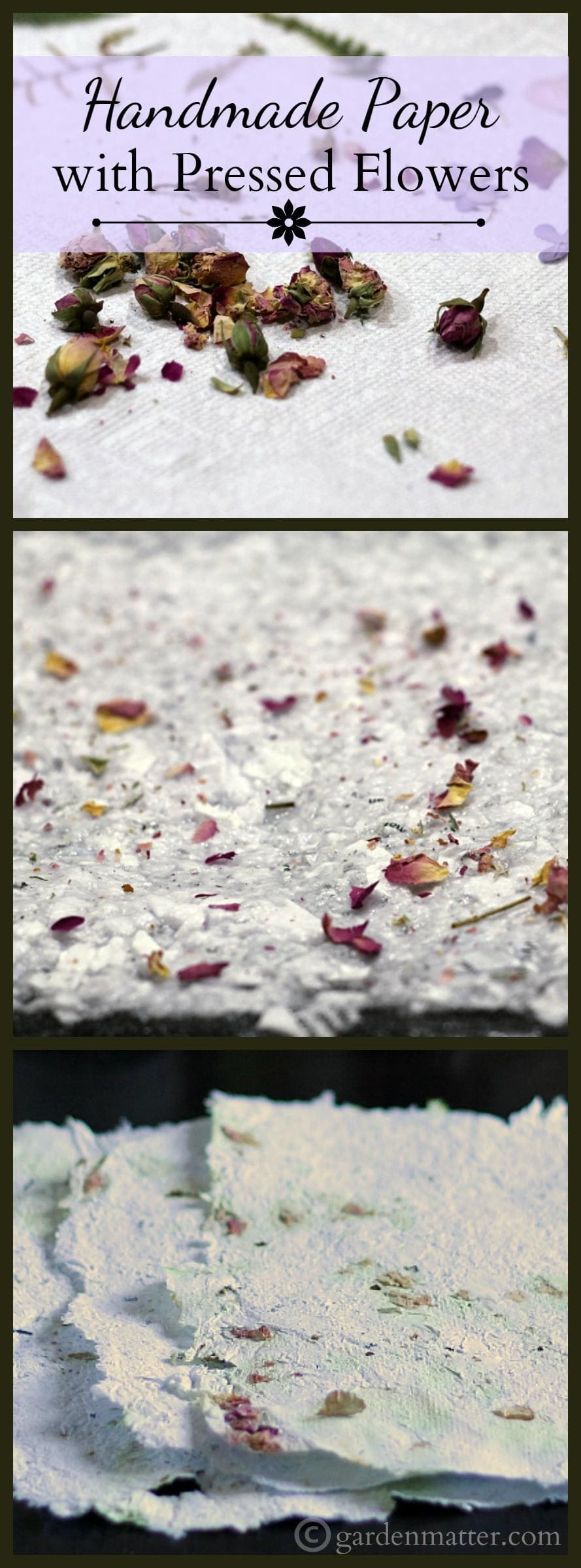 Handmade paper with pressed flowers from your own backyard learn how to easily make your own handmade paper from scrap paper and press flowers mightylinksfo