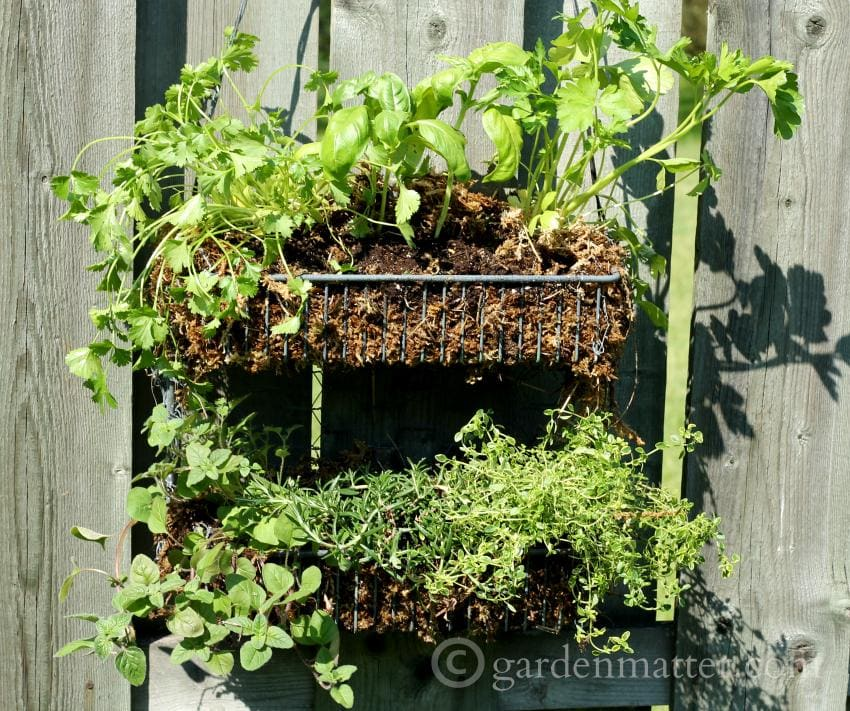 Learn how to make a simple and very affordable hanging herb garden that you can enjoy all season long.
