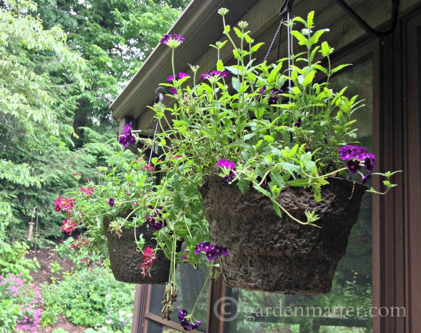 Hanging baskets ~gardenmatter.com