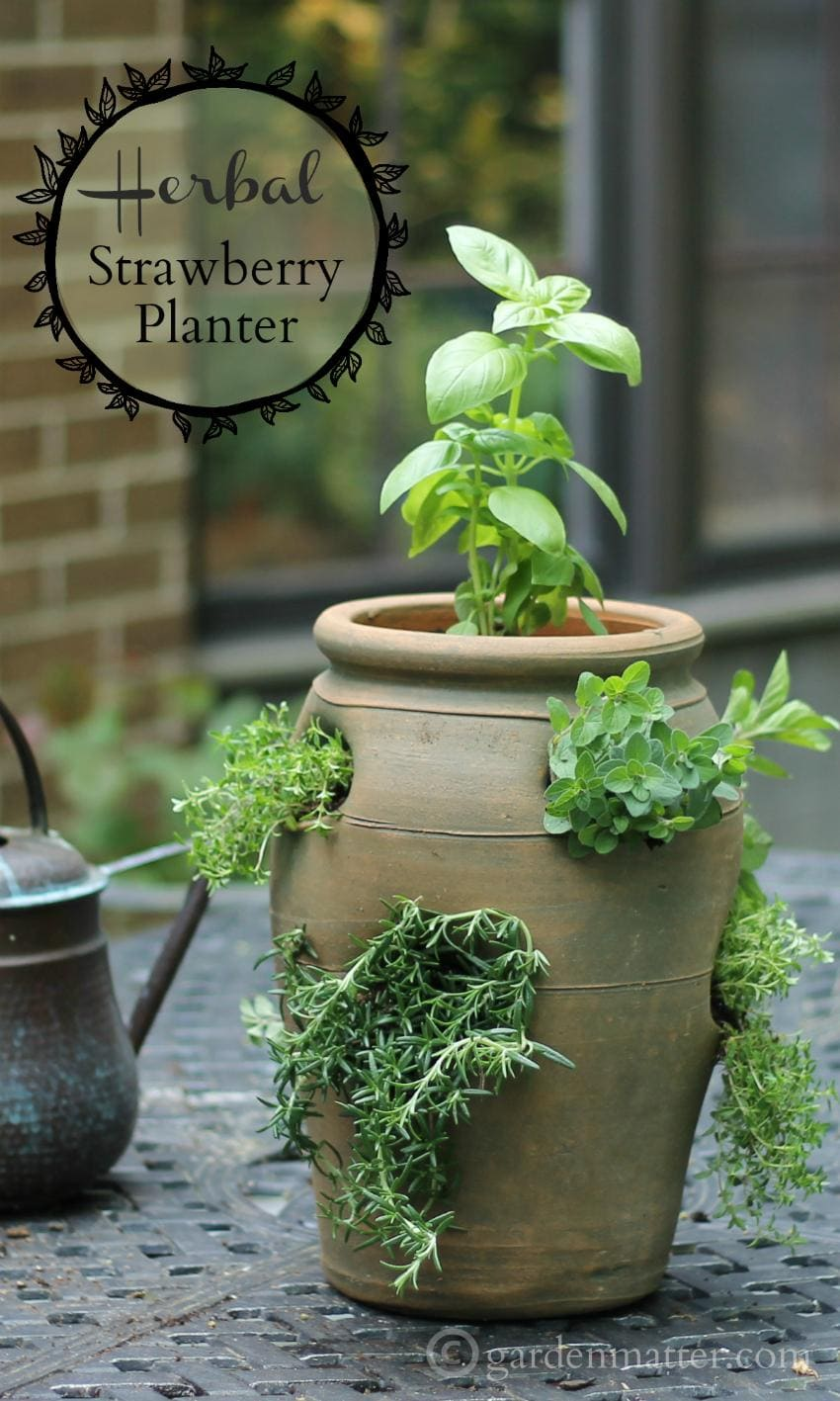 You can create a culinary herb garden by growing herbs in a strawberry pot which gives the herbs great drainage and saves on space.
