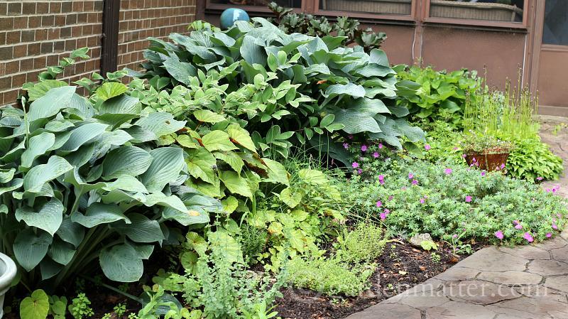 http://gardenmatter.com/garden-marker-labels-free-printable/