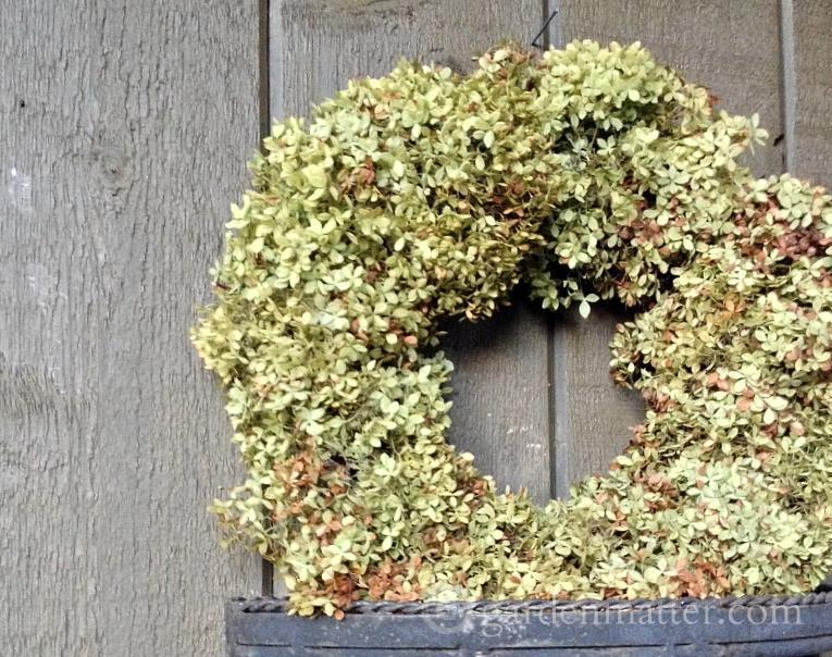 Annabell hydrangea dried wreath