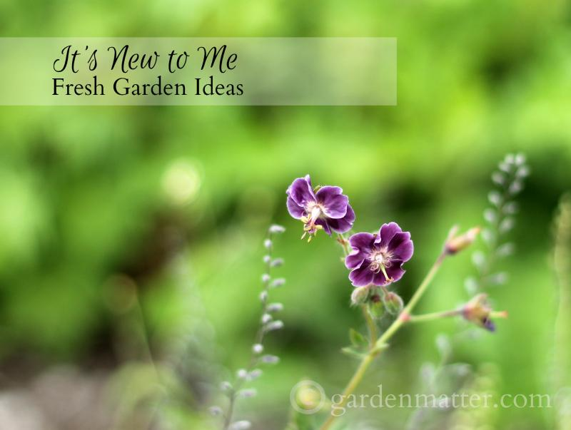 It's New to Me ~ fresh garden ideas -gardenmatter.com