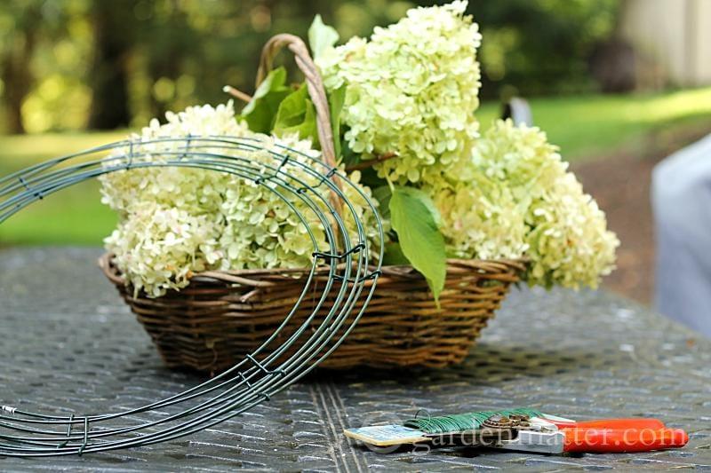 Limelight hydrangea wreath suppies