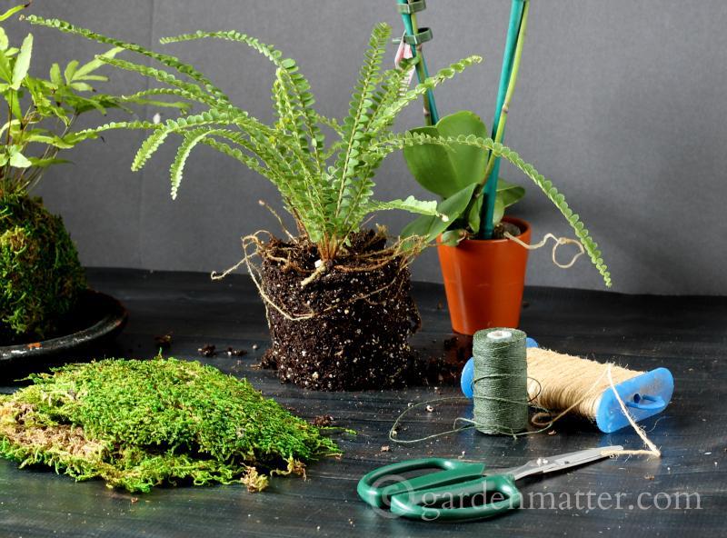 Materials - kokedama string garden - gardenmatter.com