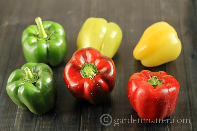 Different colored bell peppers