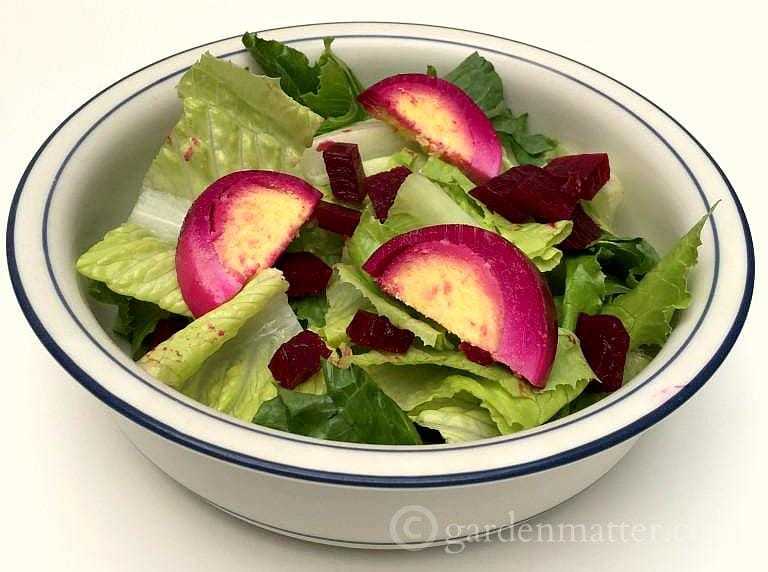Salad with Pickled beets and eggs ~ gardenmatter.com