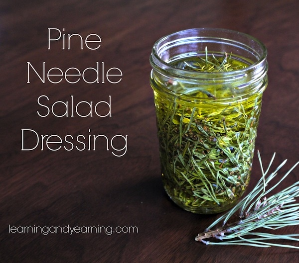 Pine-Needle-Salad-Dressing