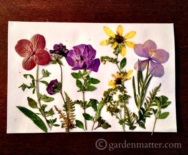 Learn how to make some great gifts with pressed flowers.