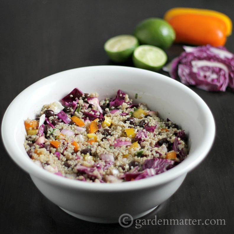 Here's a great quinoa salad recipe with black beans and a lime vinaigrette dressing. Try this  new grain considered one of the healthiest foods in the world.