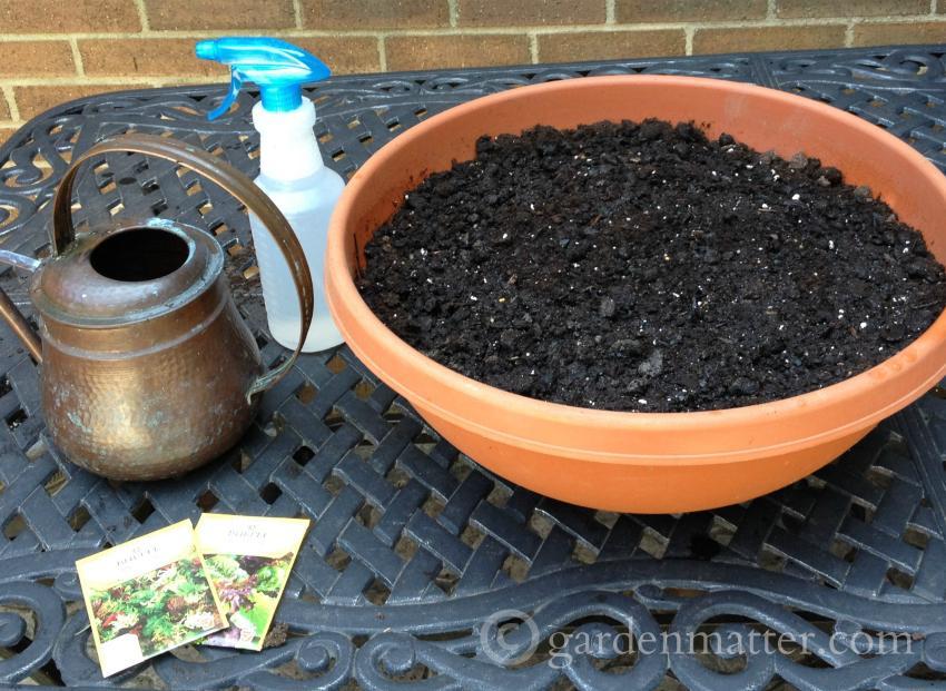 Materials ~ Grow Your Own Salad Bowl ~gardenmatter.com