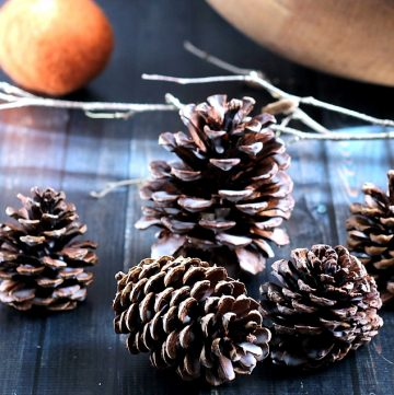 This is an easy tutorial that shows you how to make scented wax pine cones for decor and to use as fire starters.