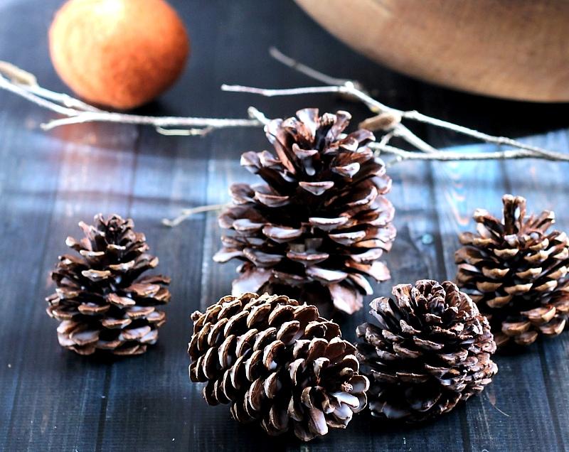 DIY Scented Wax Pine Cones