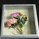 Shadow Box Peonies – A Great Way to Preserve Your Garden Flowers