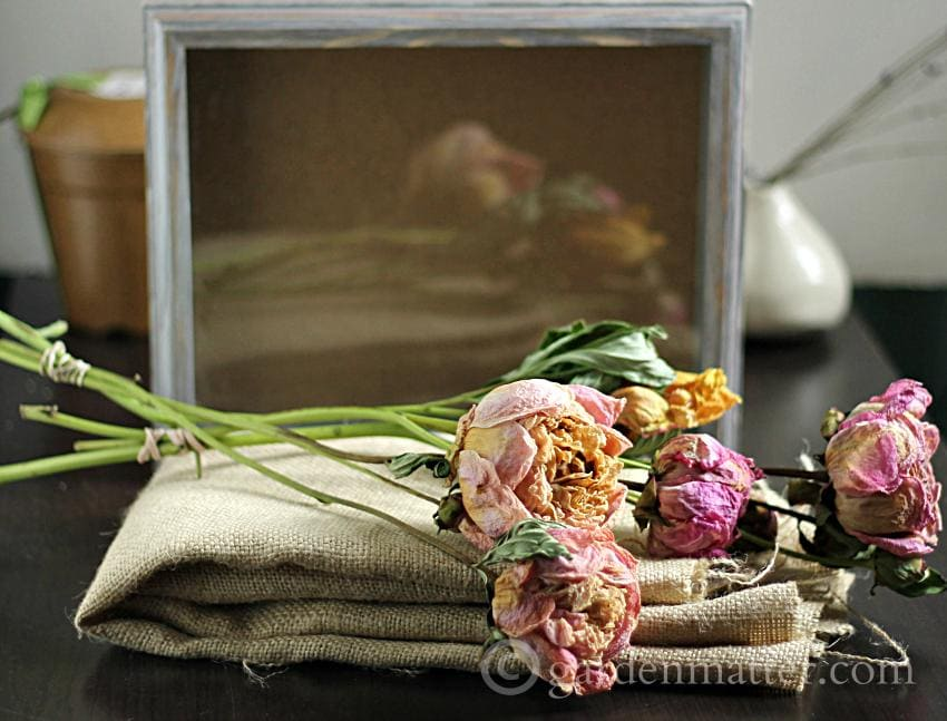 Shadow Box Peonies materials