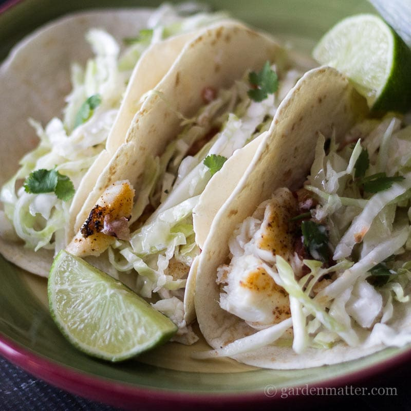 Simple fish tacos for a healthy diet for White fish tacos