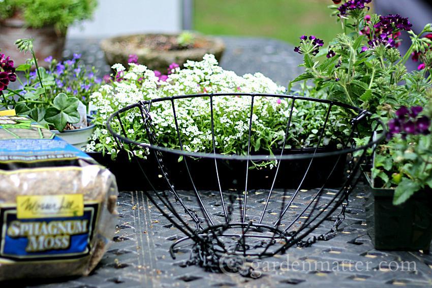 Materials  ~ Rustic Sphagnum moss planter ~ gardenmatter.com