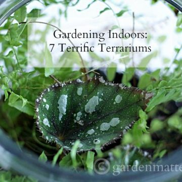 Seven different tutorials on how to make a terrarium for indoor gardening.