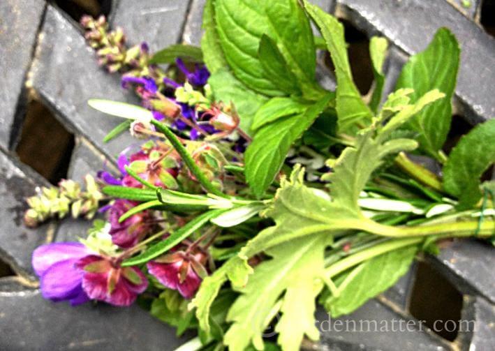 Tussie Mussie Boquet ~ gardenmatter.com