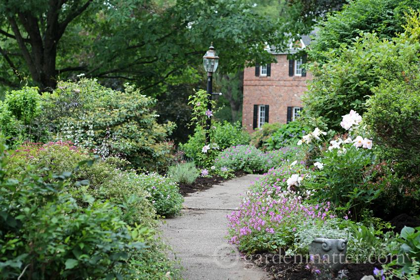 View from driveway ~ gardenmatter.com