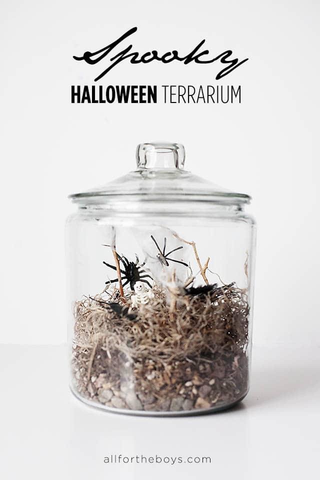 all-for-the-boys-halloween-terrarium